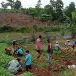 Barengkok Learning Farm